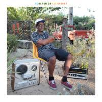 DJ HARRISON - HazyMoods : LP