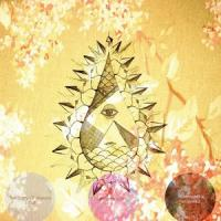 PYRAMID VRITRA - The Story Of Marsha Lotus : LP