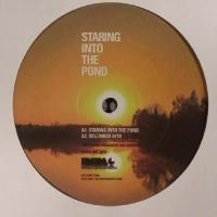 JOEY ANDERSON - Staring To The Pond : INIMEG <wbr>(US)