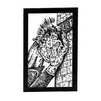 SFV ACID - Pettyclubber EP : THIRD TRY (FRA)