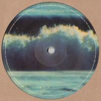 VARIOUS ARTISTS - FHUO 001 : 12inch