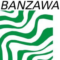 SHELTER - Banzawa : 12inch