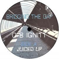 OB IGNITT - Bridging The Gap : OBONIT (US)