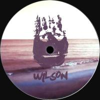 FABIO MONESI - Wishing on the Stars : WILSON (UK)