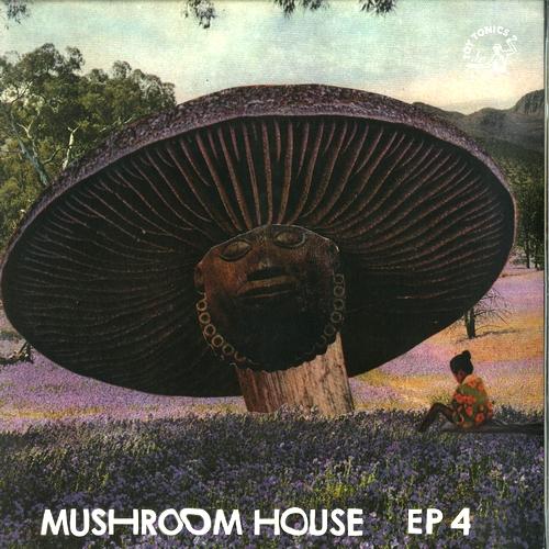VARIOUS - Mushroom House EP4 : 12inch