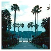 SUBMERSE - Are you Anywhere : CD