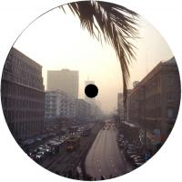 EARTH TRAX - I Gave You Everything EP : LOST PALMS (UK)