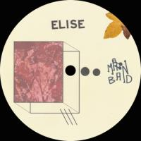 ELISE - Leaves From Yoyogi (Forest Drive West Remix) : 12inch
