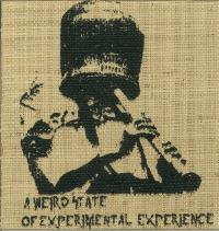 VARIOUS ARTISTS - A Weird State Of Experimental Experience : 12inch