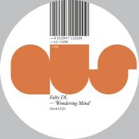 FALTY DL - Wondering Mind : 12inch