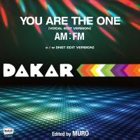 AM:FM - You Are The One : ULTRA VYBE / HMV record shop (JPN)