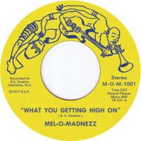 MEL-O-MADNEZZ - What You Getting High On / Beautiful Day : 7inch