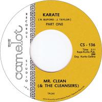 MR. CLEAN AND THE CLEANSERS - Karate : 7inch