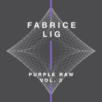FABRICE LIG - Purple Raw Vol.3 : SYSTEMATIC <wbr>(GER)