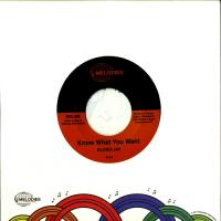 GLORIA JAY - Know What You Want / I'm Gonna Make It : 7inch+Poster