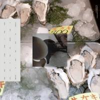 LOKE RAHBEK & FREDERIK VALENTIN - Buy Corals Online : EDITIONS MEGO (AUT)