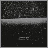 DAMON WILD - Cosmic Path : INFRASTRUCTURE NEW YORK (US)