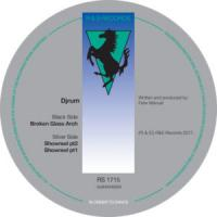 DJRUM - Broken Glass Arch : R&S (BEL)