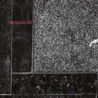 VA - Berghain 08 : OSTGUT TON (GER)