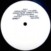 JORDAN FIELDS - 17th Level / Surely It Will : 12inch