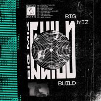 BIG MIZ - Build / Destroy : DIXON AVENUE BASEMENT JAMS (UK)
