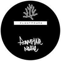 FOAMPLATE - Nettle / Moose Fly : PLANTPOWER (UK)