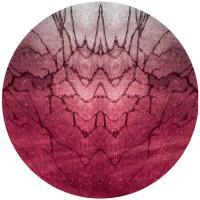 SISKIYOU - Mirrors : CHESTPLATE (UK)