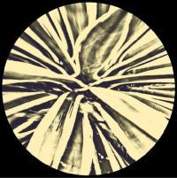 APOENA - Intense EP : 12inch