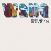 VARIOUS ARTISTS - W2NG : 89.9FM : LP