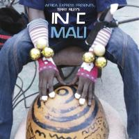 AFRICA EXPRESS - Africa Express Presents - Terry Riley's In C Mali : TRANSGRESSIVE <wbr>(UK)