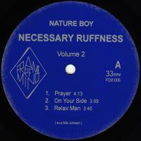 NATURE BOY - Necessary Ruffness Volume.2 : FRAME OF MIND (HOL)