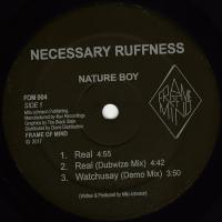 NATURE BOY - Necessary Ruffness : FRAME OF MIND (HOL)