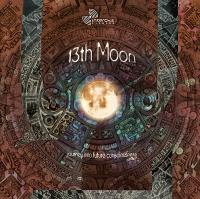 VARIOUS - 13th Moon - Journey Into Future Consciousness : CD