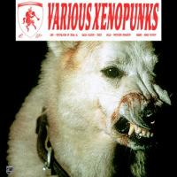 LOUH, NICOLA KAZIMIR, WALID, AUDINO - Various Xenopunks EP : LES POINTS (SWI)