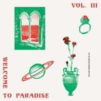 VARIOUS - Welcome To Paradise (Italian Dream House 90-94) - VOL.3 : 2LP