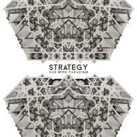 STRATEGY - Dub Mind Paradigm LP : KHALIPHONIC (US)