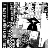 WOODMAN - SPRINKL 02 : CDR