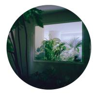 RAY KANDINSKI - Cressida EP : LOST PALMS <wbr>(UK)