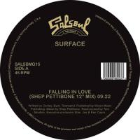 SURFACE - STOP HOLDING BACK (incl. SHEP PETTIBONE 12 : SALSOUL (UK)