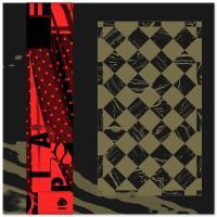 BEAR BONES, LAY LOW / DON'T DJ - PLAFOND 3 : LP