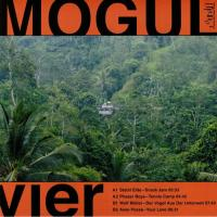 STABIL ELITE / PHASER BOYS / WOLF MULLER / AIWO POSSE - MOGUL 4 COMPILATION : THEMES FOR GREAT CITIES (GER)
