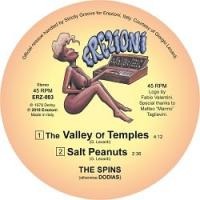 THE SPINS - The Valley Of Temples [official reissue] : 12inch