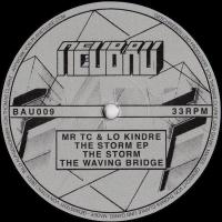 MR TC & LO KINDRE - The Storm EP : 12inch