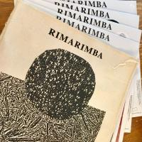 RIMARIMBA - The Rimarimba Collection : FREEDOM TO SPEND (US)