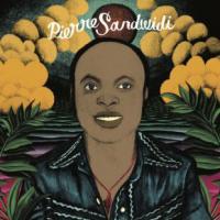 PIERRE SANDWIDI - Le Troubadour De La Savane 1976-1980 : LP