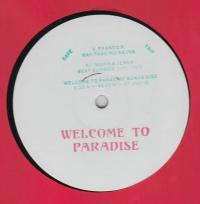 VARIOUS - Welcome To Paradise Bonus Disc : 12inch