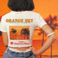 小林泉美 & FLYING MIMI BAND - Orange Sky - Endless Summer : LP
