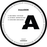 VARIOUS - Inex 005 : 12inch