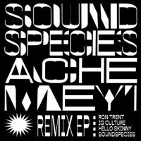 SOUND SPECIES & ACHE MEYI - Remix EP (Ron Trent, Ig Culture, Hello Skinny Remix) : MANANA (CUB)