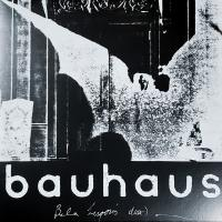 BAUHAUS - The Bala Session : LP